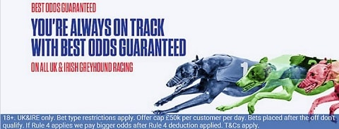 Coral Greyhounds Best Odds Guaranteed