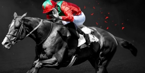 bet365 Best odds Guaranteed - Horses